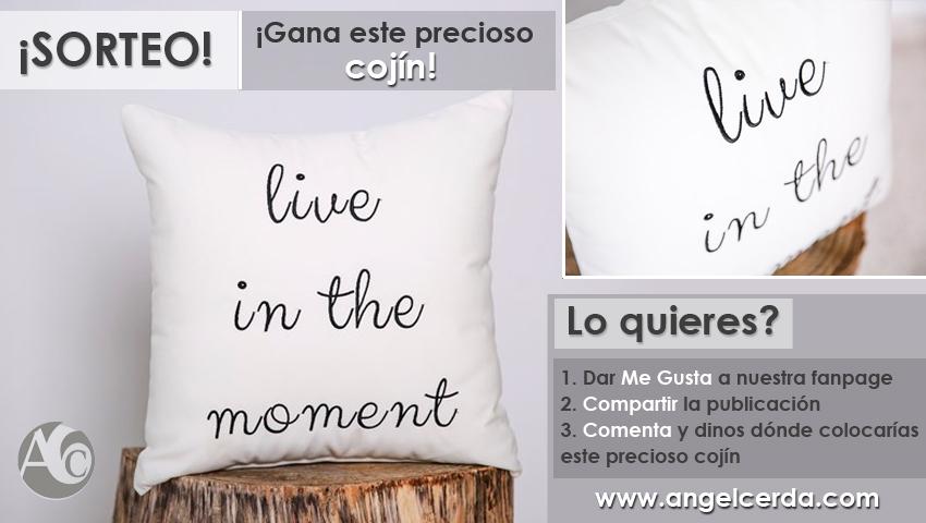 sorteo_cojin_facebook_AngelCerda